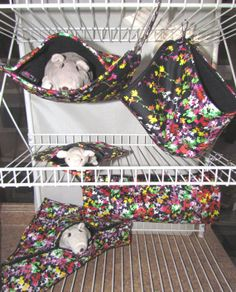5Pc Critter Nation Hammock Cage Set Pet Rat by QualityPetHammocks, $27.50