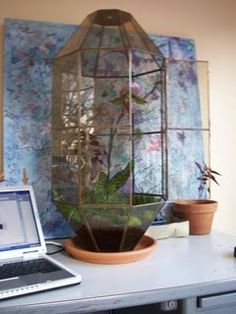 terrarium made from a recycled chandelier