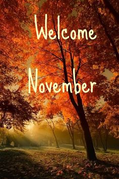 Welcome November Welcome November Hallo November, Welcome November, November Month, Hello September, New Month, November Pictures, December Images, December Wallpaper, Fall Wallpaper