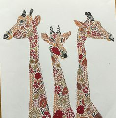 Colouring Millie Marotta Giraffe Girafe