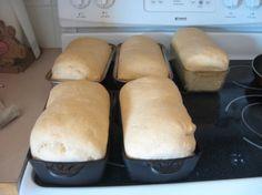 Honey-Whole Wheat Bread Recipe
