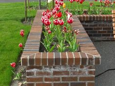 Brick Fence Planter interesting landscaping bricks houston tx keystone Source: website brick planter home design ideas pictures remodel . Backyard Planters, Fence Planters, Planter Boxes, Backyard Landscaping, Planter Ideas, Landscaping Ideas, Backyard Ideas, Brick Wall Gardens, Brick Garden