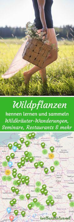 Willst du neue Wildpflanzen und ihre Anwendungen kennenlernen? Dann nimm an einer Wildkräuterwanderung teil! Hier eine Karte mit Anbieter in Deutschland, Österreich und der Schweiz.