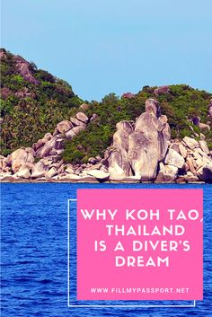 Why Koh Tao Thailand is a Diver's Dream