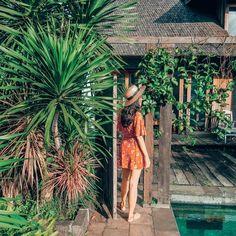Ubud, Bali. @clarinta