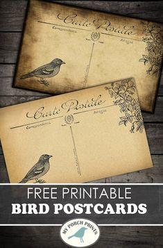 Freebie Friday: Bird Postcards