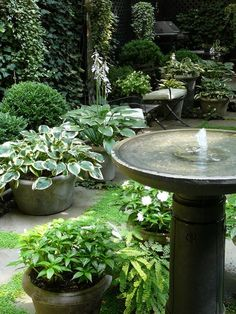 Shade garden containers - Simple water feature in a Townhouse Garden Garden Fountains, Garden Pots, Water Fountains, Fountain Garden, Bird Bath Fountain, Potted Garden, Bird Bath Garden, Fountain Design, Garden Water