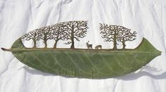 Lorenzo Duran does sell his one of a kind cut leaf silhouettes, some of which are shown below, on his blog. If the leaf is already sold, he'll be happy to recreate it for you.