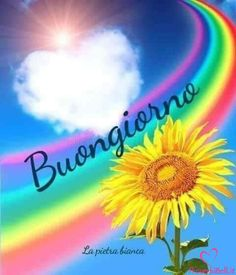 Good Morning Greetings, Good Morning Quotes, Goog Morning, Good Morning Images Flowers, Italian Greetings, Italian Memes, Italian Phrases, Rainbow Painting, Cute Pins