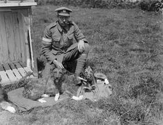 At the outbreak of war the British army had one trained dog attached to it (an Airedale), the German army had 6000.