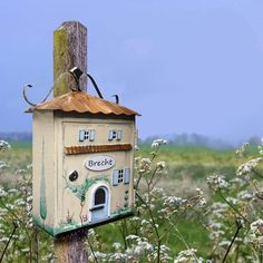 Animal House, Mail Art, Mailbox, Handicraft, Arts And Crafts, Lettering, Outdoor Decor, Painting, Animals