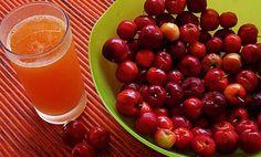 Ацерола – плодът с най – висока концентрация на естествен витамин С