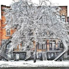 #stairsandsteps #staircases_fireescapes #montrealportesdoors #onlydoors | Use Instagram online! Websta is the Best Instagram Web Viewer!