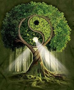 Yin Yang Tree Of Life Diamond Painting Kit makes stunning diamond art for home decoration! This DIY diamond painting kit has everything you need to create a Image Zen, 5d Diamond Painting, Tai Chi, Tree Art, Sacred Geometry, Mother Earth, Statues, Fantasy Art, Cool Art