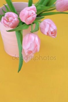 Download - Beautiful pink tulips on yellow background — Stock Image #19350077