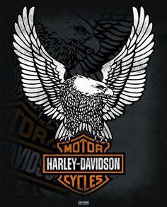 CARTEL DE MOTO HARLEY