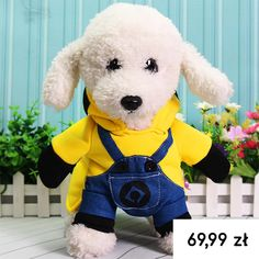 Bajila Funny Pet Dog Coat for Small Dog Jacket Warm Puppy Clothes with Hooded Costume Teddy Cat Clothes Pet Products Ropa Funny Costumes, Pet Costumes, Halloween Costumes, Little Dogs, Minion Dog Costume, Cute Minions, Minions Cartoon, Puppy Coats, Cute Funny Dogs