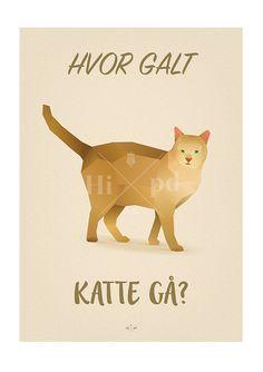 Katte Gå