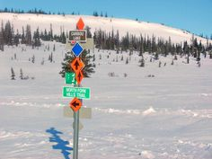 Lost in the Alaskan wilderness?  Just follow the sign. - Photo by Bill Cody