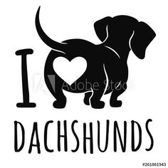 900 Dachshund Humor Ideas In 2021 Dachshund Dachshund Love Wiener Dog