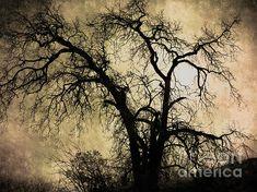 Shadowlands by Bedros Awak