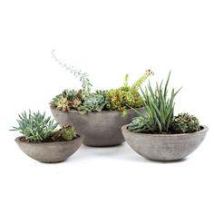 Yano Planter | Repose Home & Garden