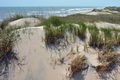 Pea Island National Wildlife Refuge- Will drive through on the way to Hatteras