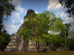 Magnificent Temple In The Mayan City Of Tikal (In Guatemala) I LOVE history!!!