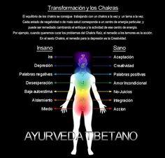 TRANSFORMACIÓN Y SALUD DE LOS CHAKRAS    El equilibrio de los chakras se consigue trabajando con un chakra a la vez y un tema a la vez. Cada estado de negatividad o de mala salud corresponde a un centro de energía particular, y puede ser remedio cambiando el enfoque y la actividad de ese centro de energía. Por ejemplo cuando queremos curar el chakra raíz, el remedio a los temores es la acción. En el sexto chakra, el remedio para la depresión es la creatividad…