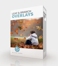 Leaf & Branch Overlays