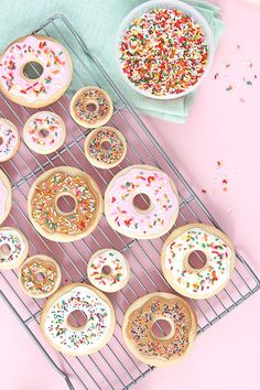 Donut Cookie DIY // How to Bake and Decorate Donut Cookies! Donut Cookie DIY // How to Bake and Decorate Donut Cookies! Slow Cooker Desserts, Cute Cookies, Sugar Cookies, Just Desserts, Dessert Recipes, Cookie Desserts, Cake Chocolat, Gateaux Cake, Cupcakes