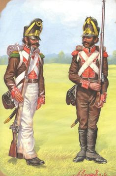 Portugese Legion, Foreign Contingents, Fr Portuguese, 1815 Napoleonic
