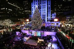 I've been to NY a couple of times but someday I want to be there at Christmas time!