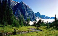 природа горы - Pesquisa Google