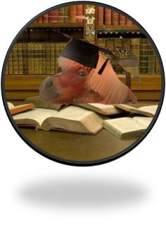 Professor Gus, Dean of the School of Imitation Law Professor, Dean, School, Pictures, Animals, Teacher, Animales, Animaux, Animal