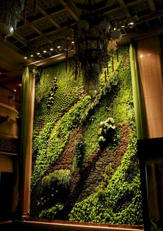 Diy How To Making Of Patrick Blanc Style Green Wall Vertical - Diy How To Making Of Patrick Blanc Style Green Wall Vertical Garden On Vimeo Vertical Garden Diy Vertical Gardens Small Gardens Patrick Blanc St Patrick Indoor Plants Indoor Garden Outdoor Gar Dream Garden, Garden Art, Garden Ideas, Big Garden, Garden Planters, Herb Garden, Vertikal Garden, Creative Architecture, City Architecture