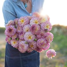 Truly one of a kind, this unique peach-coral bloomer has the loveliest purple center and reverse petals. Cut Flower Garden, Flower Farm, Types Of Flowers, Cut Flowers, Great Cuts, Unique Colors, Lady, Flower Power, Outdoor Gardens