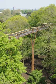 An elevated walkway through the trees by Marks Barfield Architects