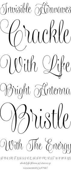 Wishes Script by Typesenses - Desktop Font, WebFont and Mobile Font - YouWorkForThem