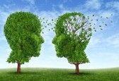 New dimension in life... Leven met de ziekte van Alzheimer met twee bomen in de vorm van een menselijk hoofd en de hersenen als een symbool van de stress en de effecten op de geliefden en verzorgers door het verlies van geheugen en cognitieve intelligence-functie