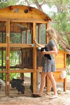 Building A Chicken Coop - - Building a chicken coop does not have to be tricky nor does it have to set you back a ton of scratch. Round-Top Walk-In Chicken Coop