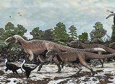 Dinossauros sofriam de artrite há 150 milhões de anos, afirmam cientistas.  Pesquisa foi feita a partir do fóssil de um crânio de 1,7 metro de comprimento de um pliossauro fêmea que foi encontrado no sudeste da Inglaterra. (Clique na foto)