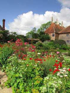 Ronny is telling you:'The Barn Garden. English Country Gardens, Most Beautiful Gardens, Garden Painting, East Sussex, Hedges, Country Life, Wild Flowers, Greenery, Garden Design