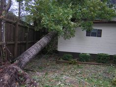 A tree that has endured extreme pressure or impact can lean, fall over or even get uprooted from the ground which can result in a considerable amount of damage to your property. The only way to avert such a calamity is to hire affordable tree removal experts like us. For more update about Emergency Tree Removal Acacia Gardens you can call us by 0452585258.
