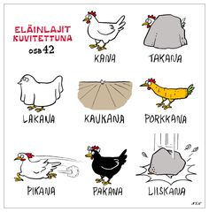 Eläinlajit how to learn Finnish easily and with humor . a hilarious… Learn Finnish, Finnish Words, Finnish Language, Joy And Happiness, How To Make Notes, Funny Facts, Funny Photos, Hilarious, Comics