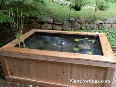 PlantPostings: How to make an above-ground pond