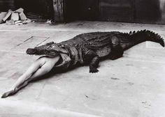 Cena de balé de Pina Bausch. Foto de Helmut Newton, 1983