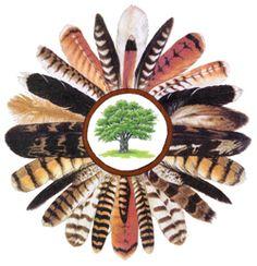 wren feather - Google Search Pole Star, Wren, Feather, Google Search, Feathers, Fur