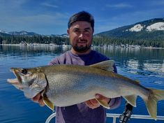 Trout Fishing South Lake Tahoe - All About Fishing Sport Fishing, Fly Fishing, Lake Tahoe Fishing, 2d Character, Character Design, Baby Boy Cakes, South Lake Tahoe, Image House, Trout