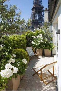 Balkon Weiße Blumen